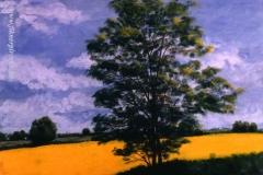 Fiatal akácok tavasza 1997. 50×60cm, olaj, farost
