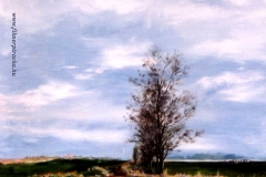 A karcagi határban 1998. 40×50cm, olaj, farost