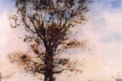 Magányos fa 1998. 41×60cm, olaj, farost
