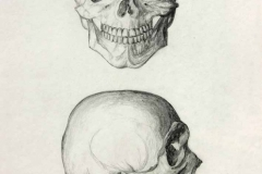Két koponya 2001. 29×21cm, ceruza