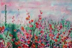Virágzó babrózsa 2004. 20×28cm, akvarell