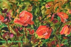 Pipacsok4 2005. akril, farost1 35×22,5cm, olaj, akril, farost