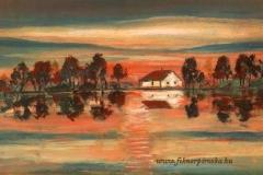 Halászház a Halastó partján 2006 .24×30cm, olaj, farost