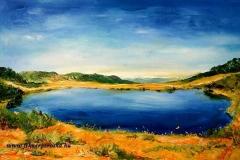 A Buta tó 2007.40×60cm, olaj, vászon