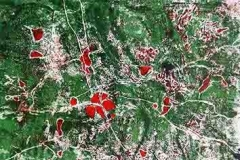 Térkép 2014. 18×23cm, színezett monotípia