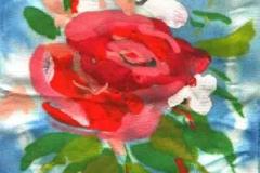 B-7 Rózsa és nárcisz