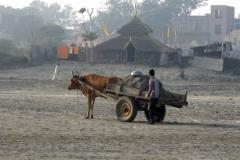 3. Homok szállító a Jamuna parton