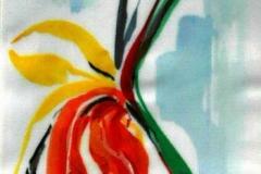Papagályvirág