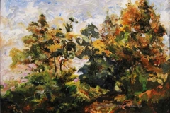Őszi kép 2003. 30×40cm, olaj farost