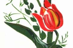 F-T-15 Piros tulipánok
