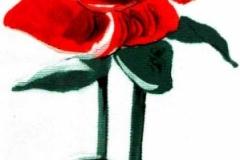 F-T-16 Rózsa bimbóval