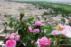 27. Illatos rózsák a tixei kolostorban